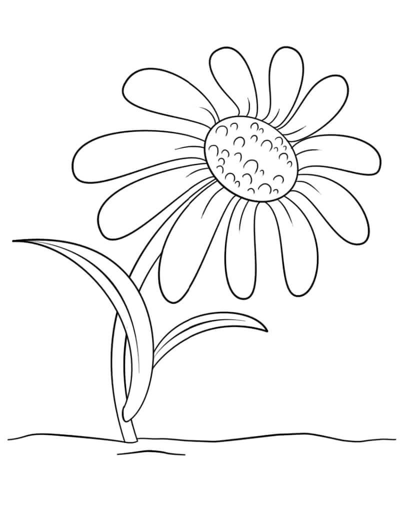 Desenhos de Desenho animado de Margarida para colorir