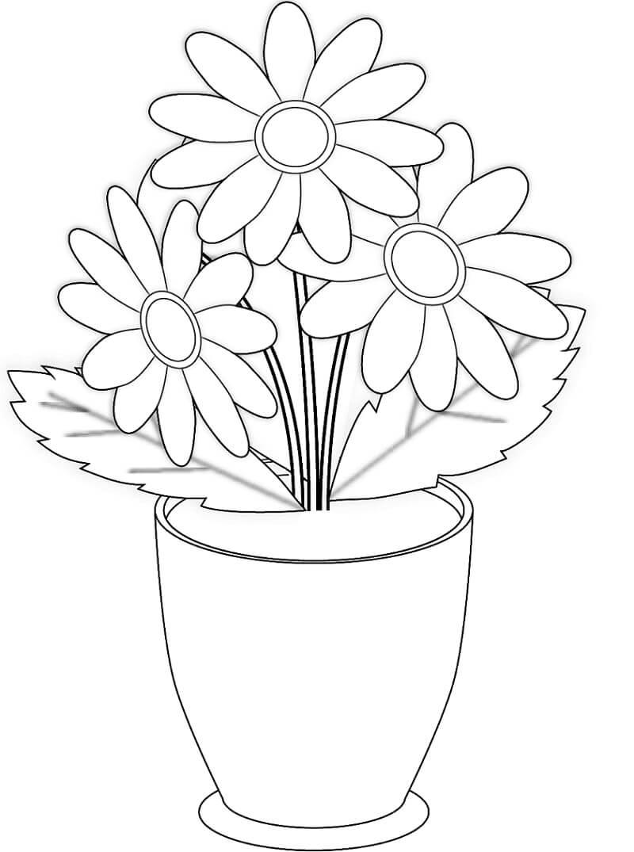 Desenhos de Flores de camomila num jarro para colorir