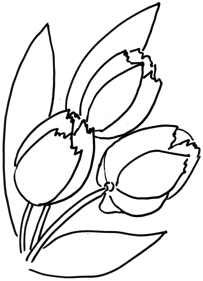 Desenhos de Flores de tulipa para colorir