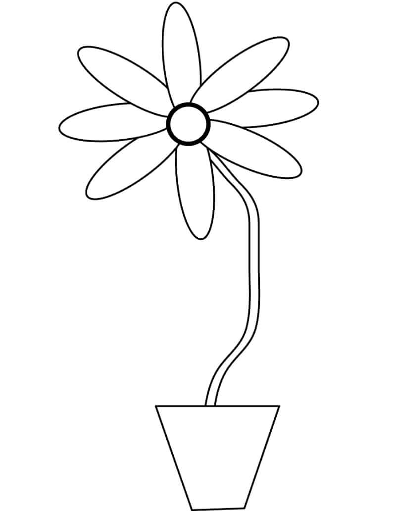 Desenhos de Margarida em uma panela 2 para colorir