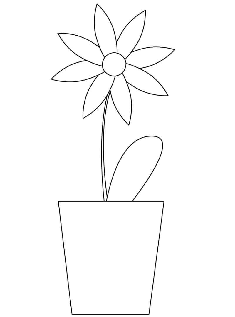 Desenhos de Margarida em uma panela para colorir