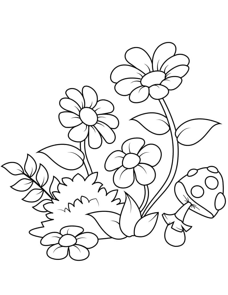 Desenhos de Margaridas 3 para colorir