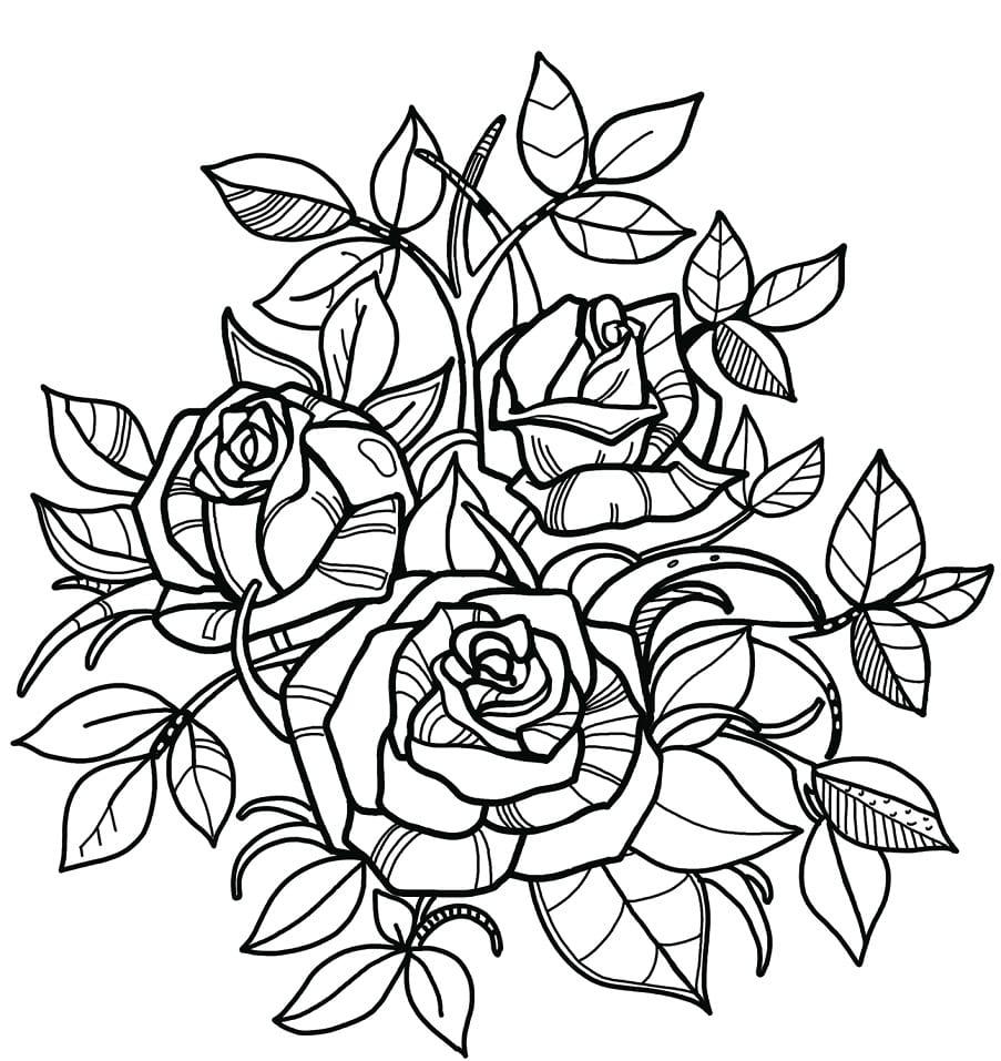 Desenhos de Rosas 2 para colorir
