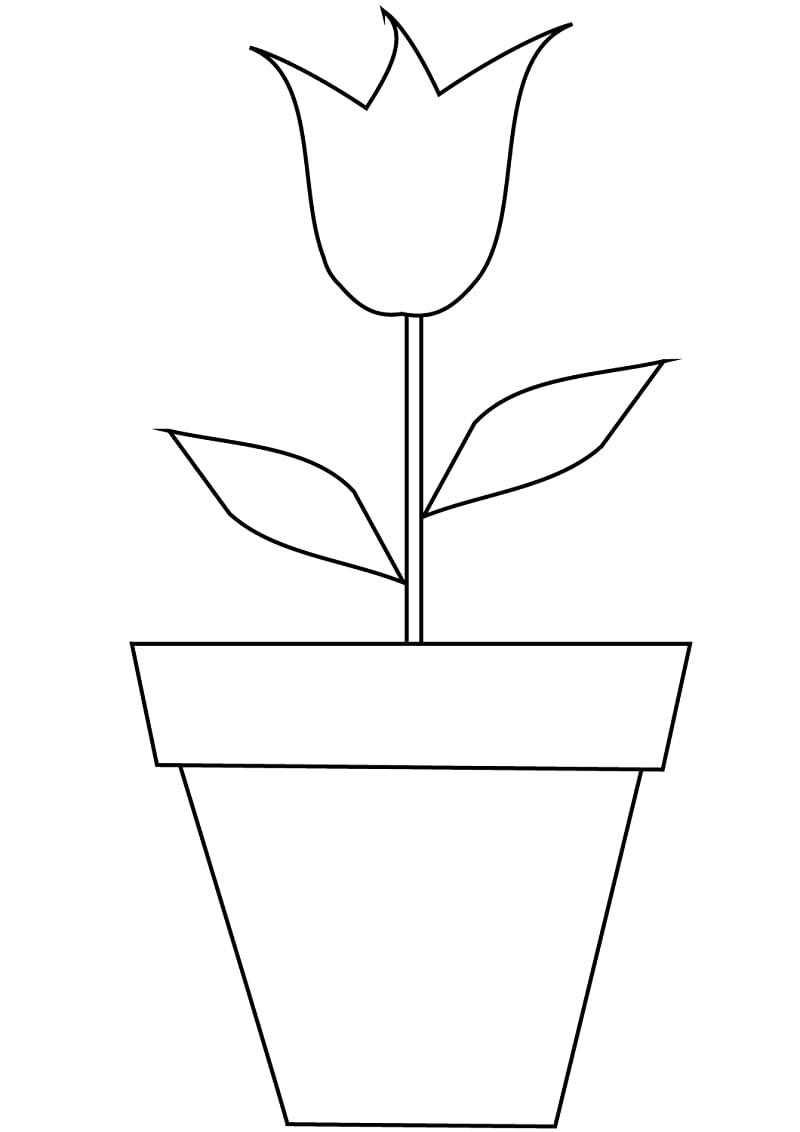 Desenhos de Tulipa num jarro para colorir