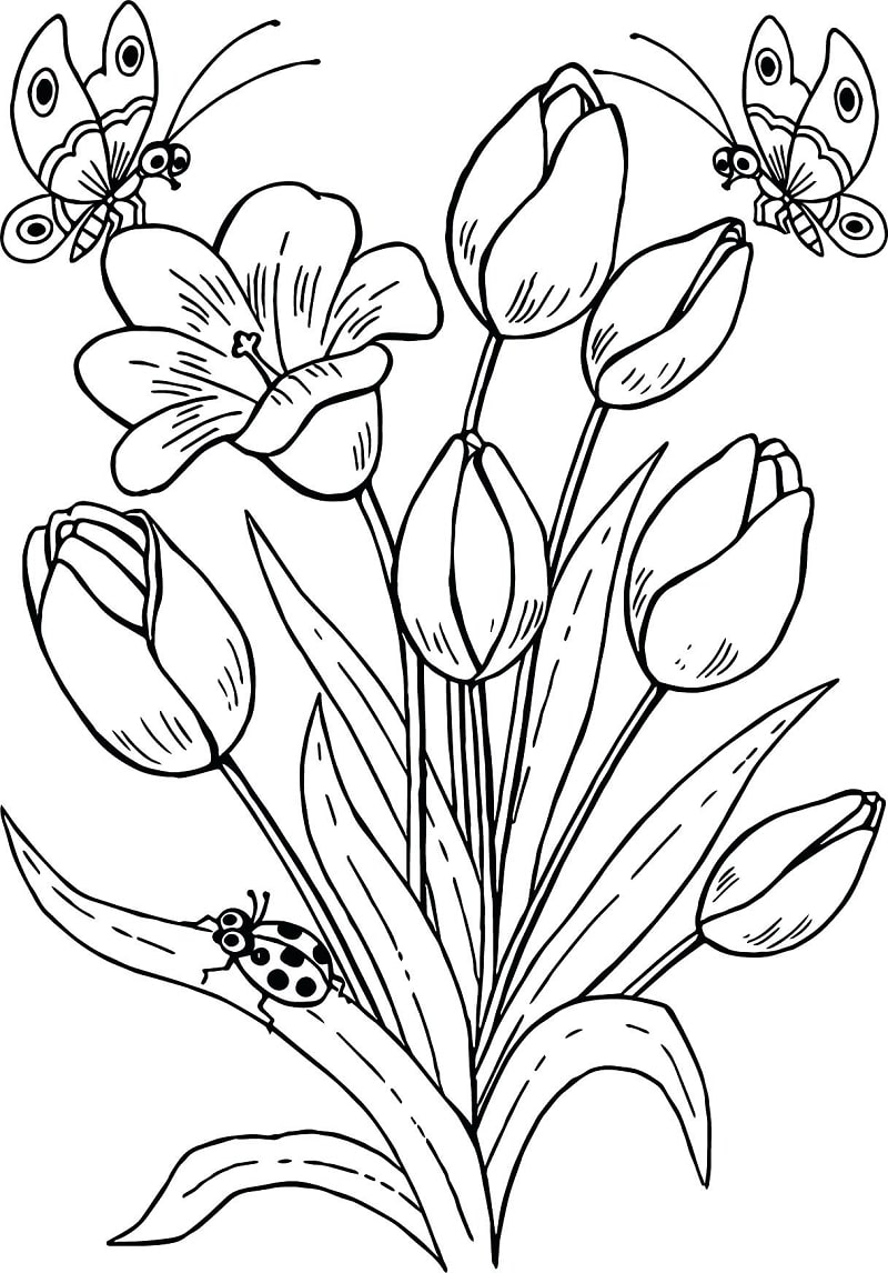 Desenhos de Tulipas e borboletas para colorir