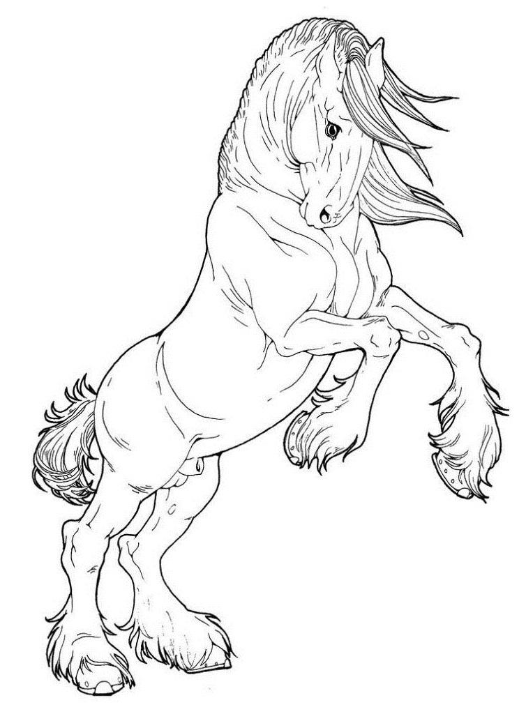 Desenhos de Bom Cavalo para colorir