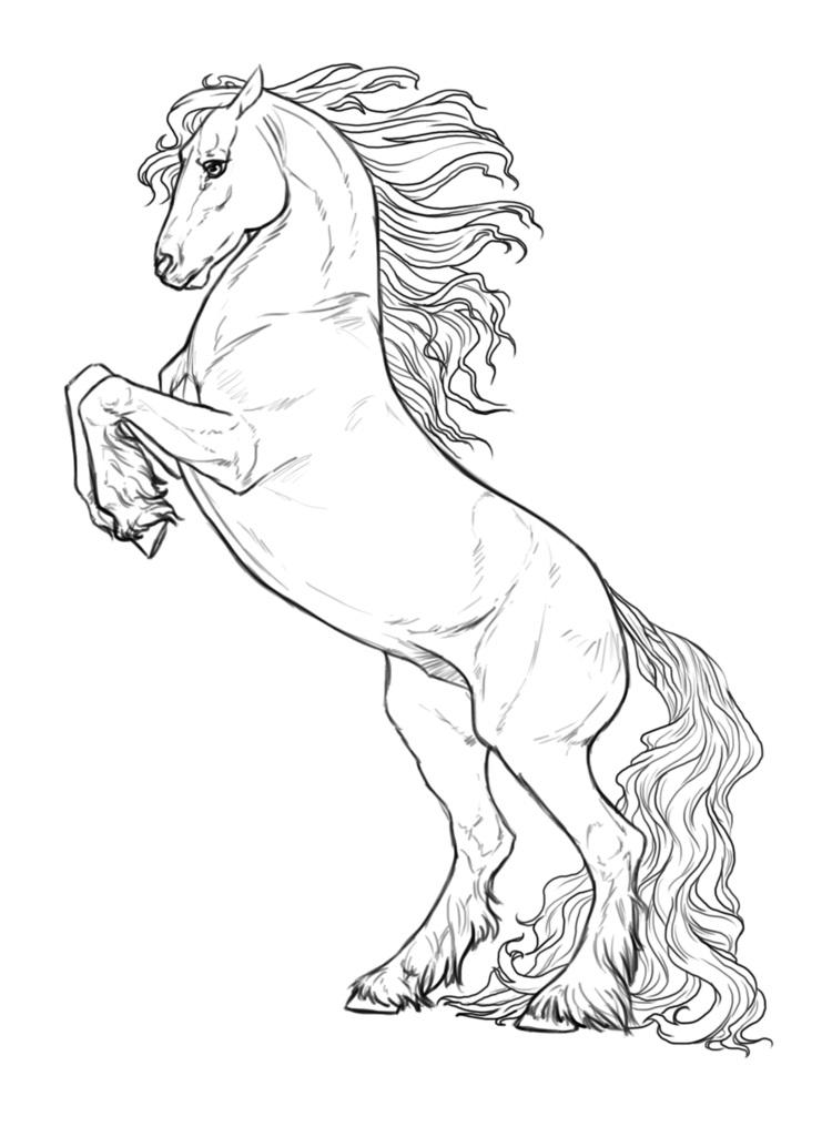 Desenhos de Cavalo Bonito para colorir
