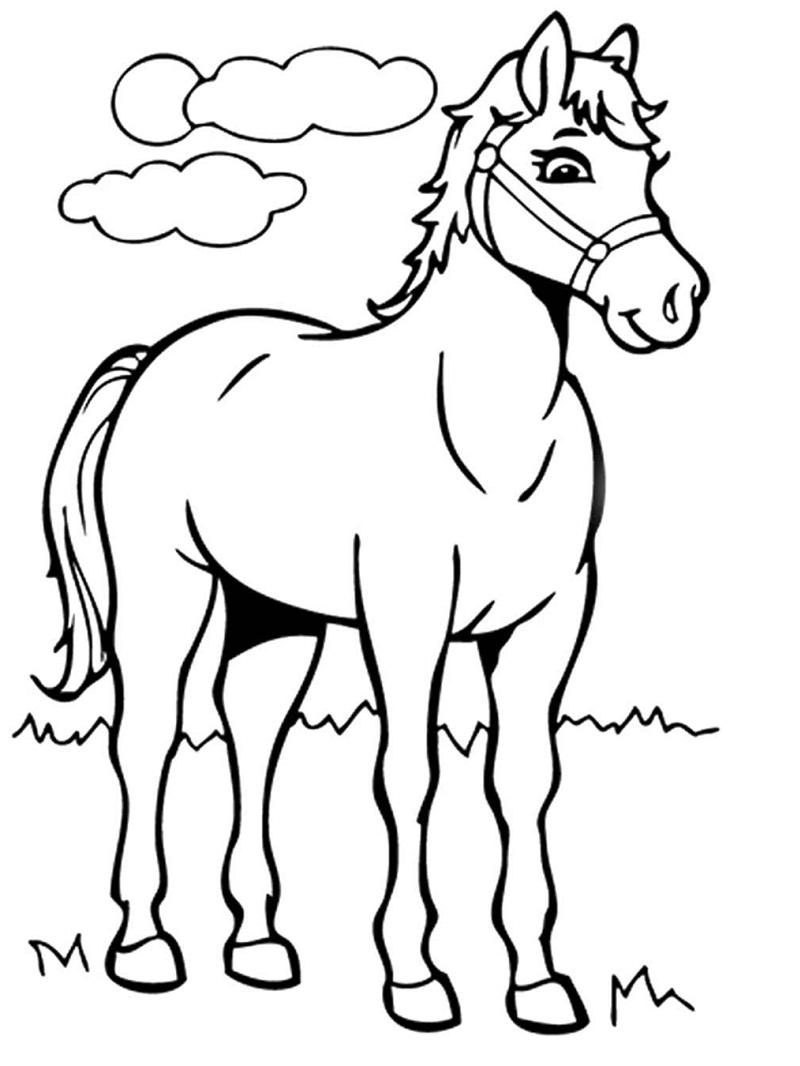 Desenhos de Cavalo de Desenho Animado para colorir