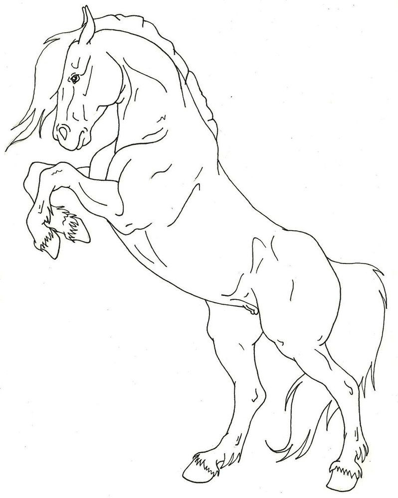 Desenhos de Cavalo Incrível para colorir