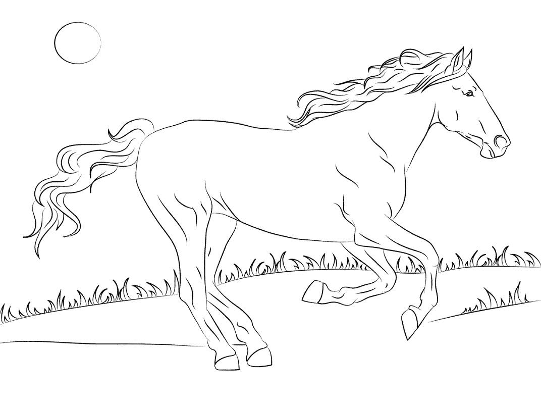 Desenhos de Cavalo Mustang para colorir