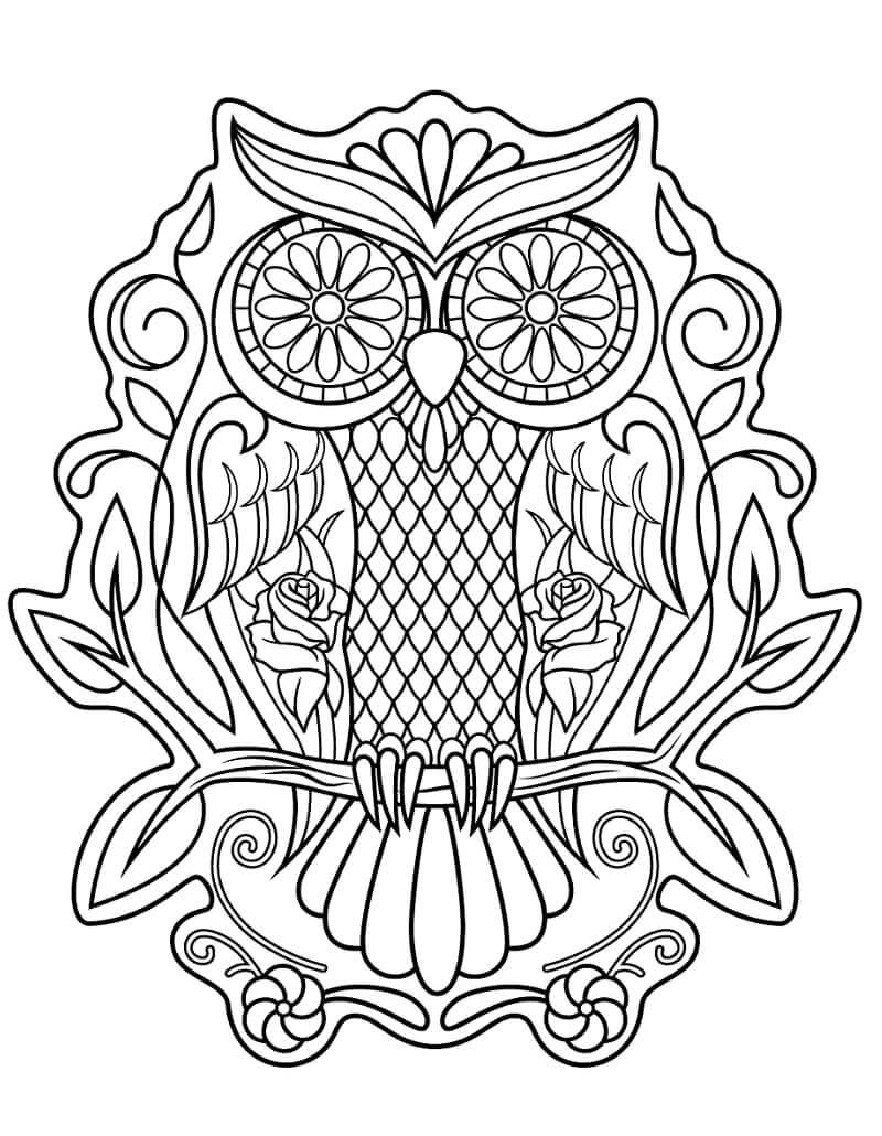 Desenhos de Coruja Caveira de Açucar para colorir