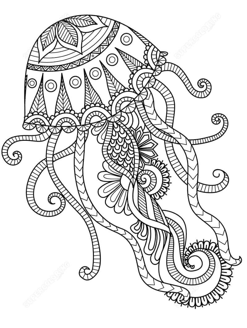 Desenhos de Zentangle Água-viva para colorir