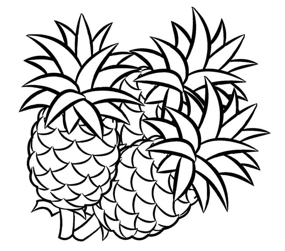 Desenhos de Abacaxis para colorir