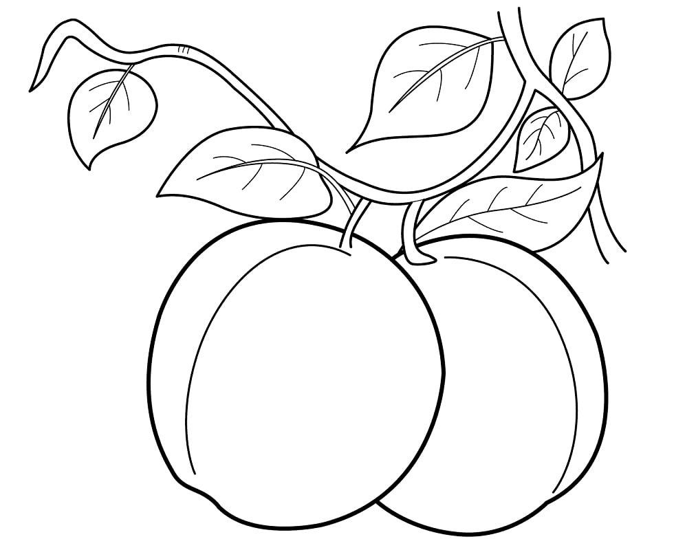 Desenhos de Dois Pêssegos 1 para colorir