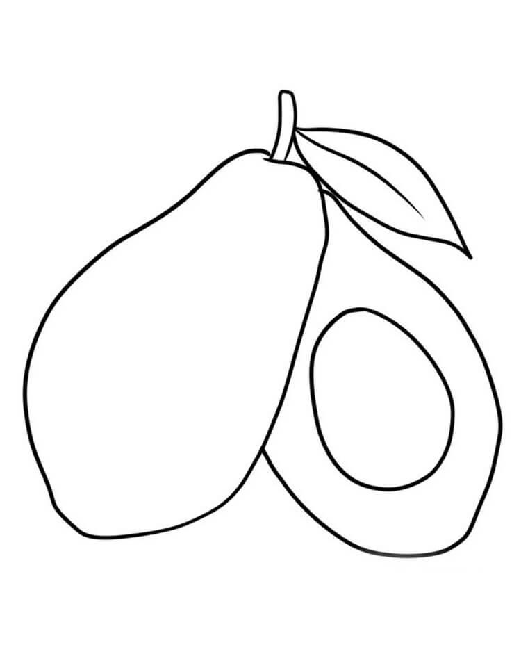 Desenhos de Fruta Abacate 2 para colorir