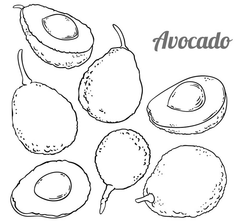 Desenhos de Fruta Abacate 8 para colorir