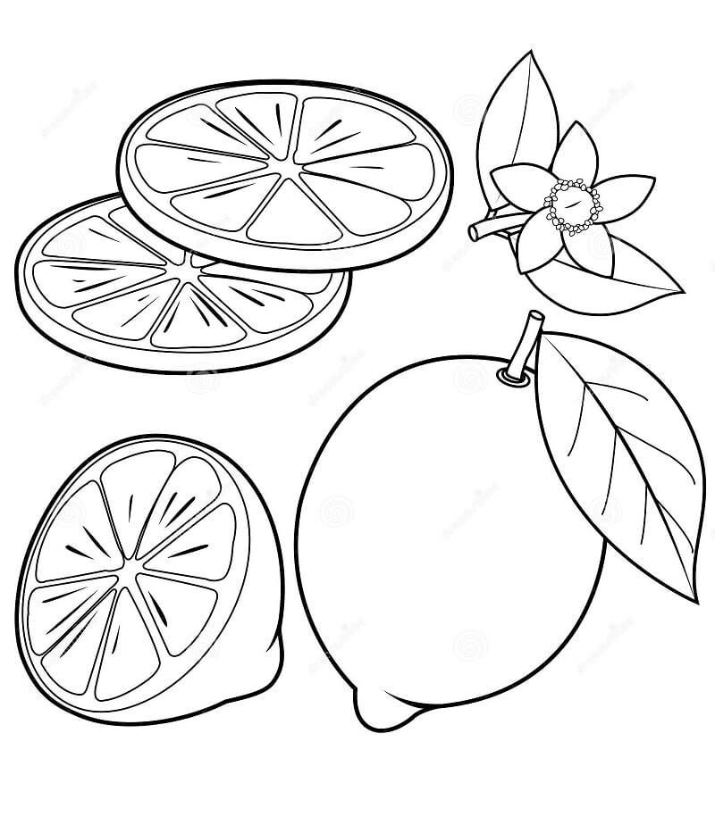 Desenhos de Fruta Limão 6 para colorir