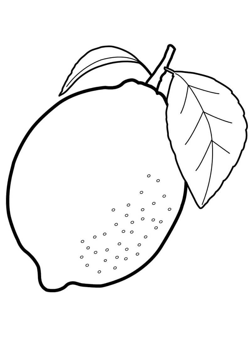 Desenhos de Fruta Limão para colorir