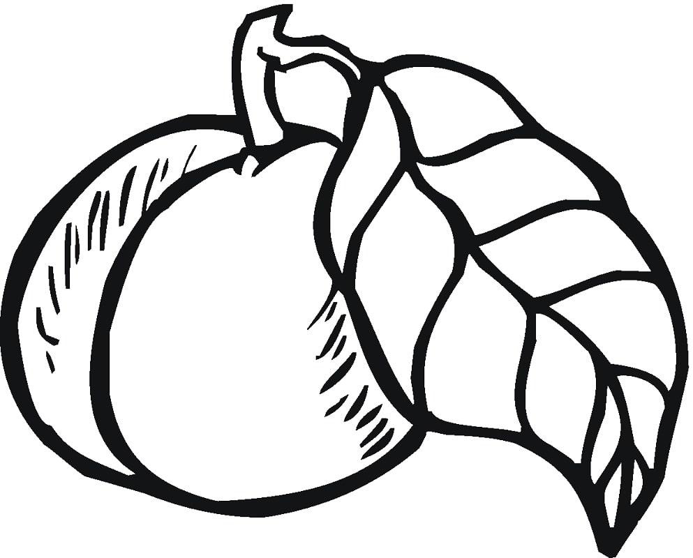 Desenhos de Fruta Pêssego 1 para colorir