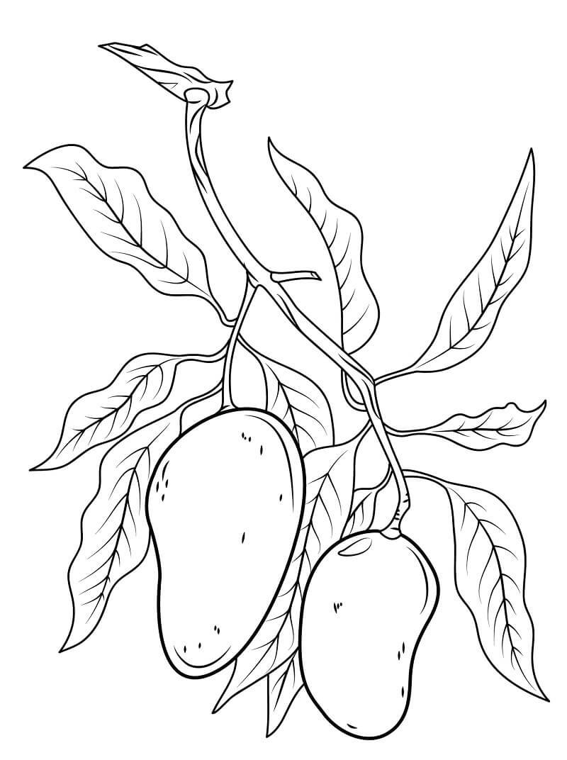 Desenhos de Mangas 5 para colorir