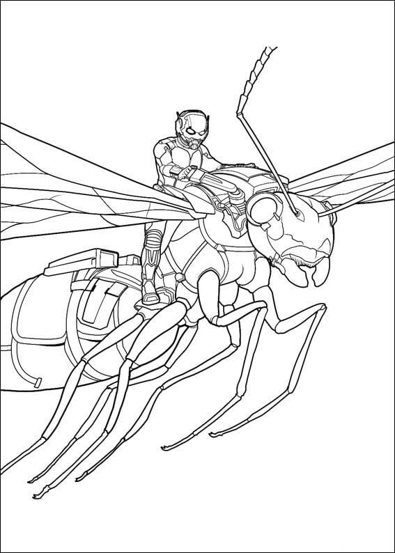 Desenhos de Homem Formiga Incrível 2 para colorir