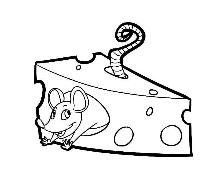 Desenhos de Rato e Queijo 4 para colorir