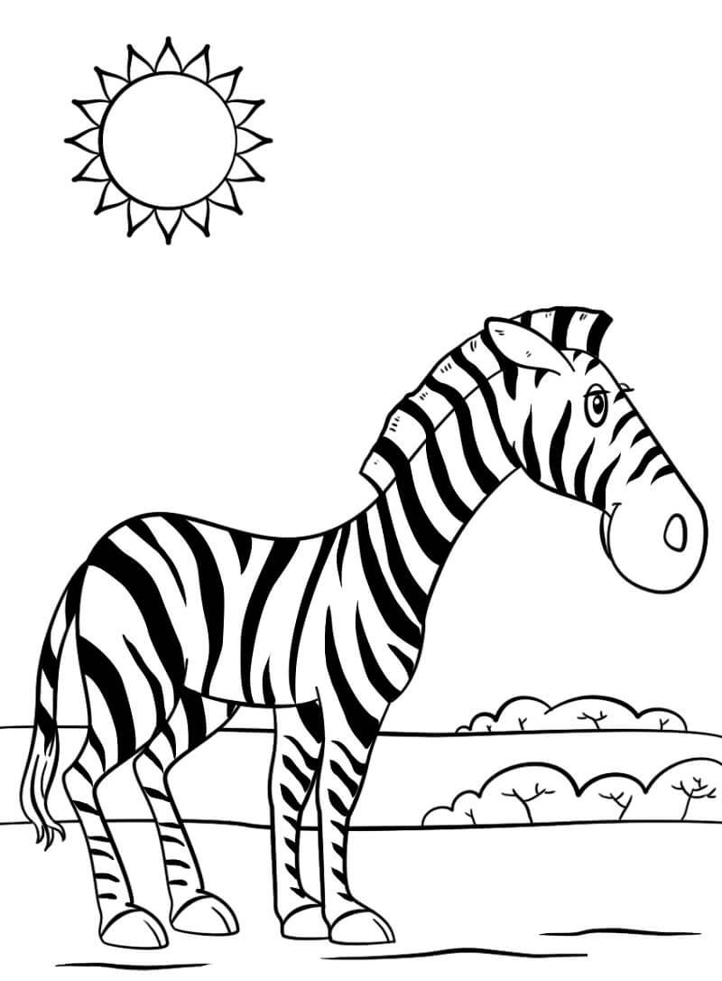 Desenhos de Zebra Fofa 1 para colorir