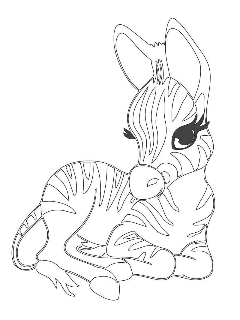 Desenhos de Zebra Fofa 4 para colorir