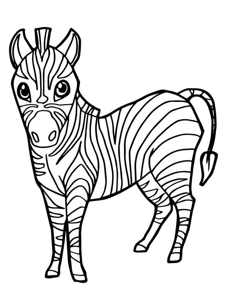 Desenhos de Zebra Fofa 5 para colorir
