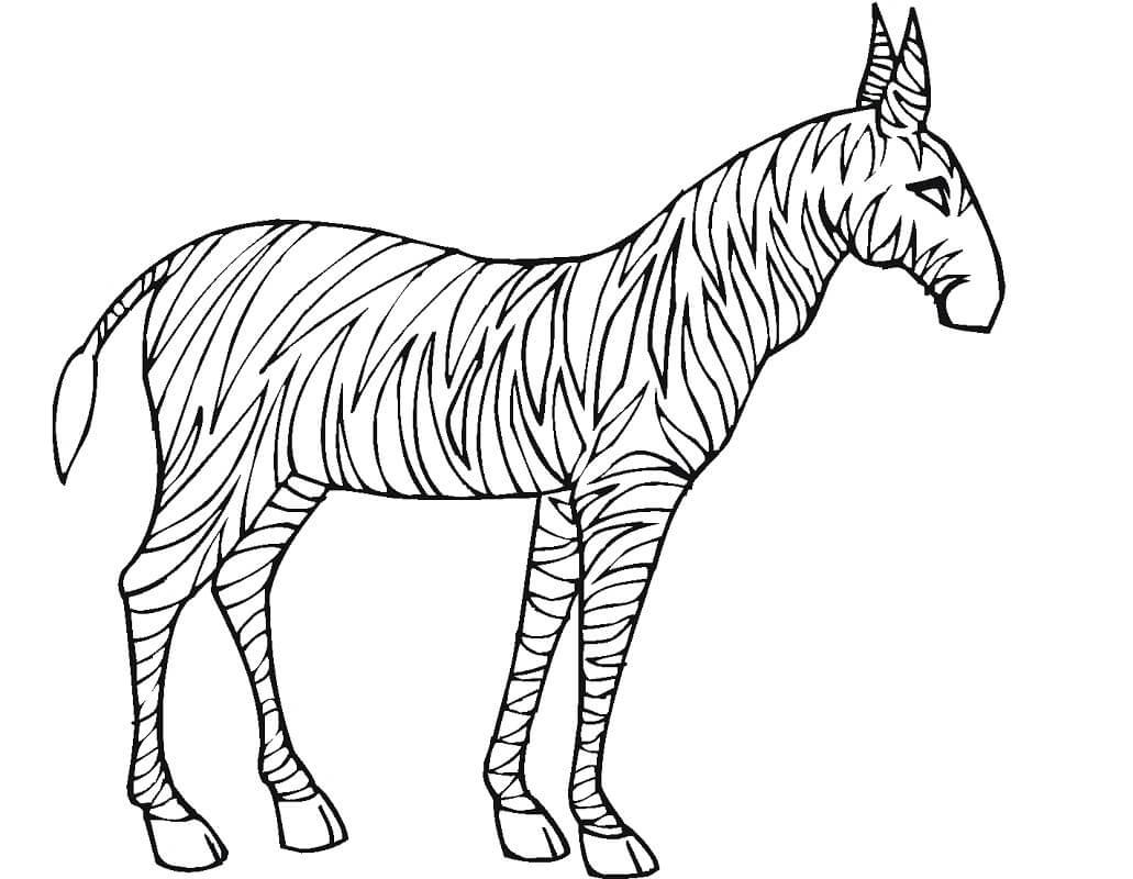 Desenhos de Zebra Normal 2 para colorir