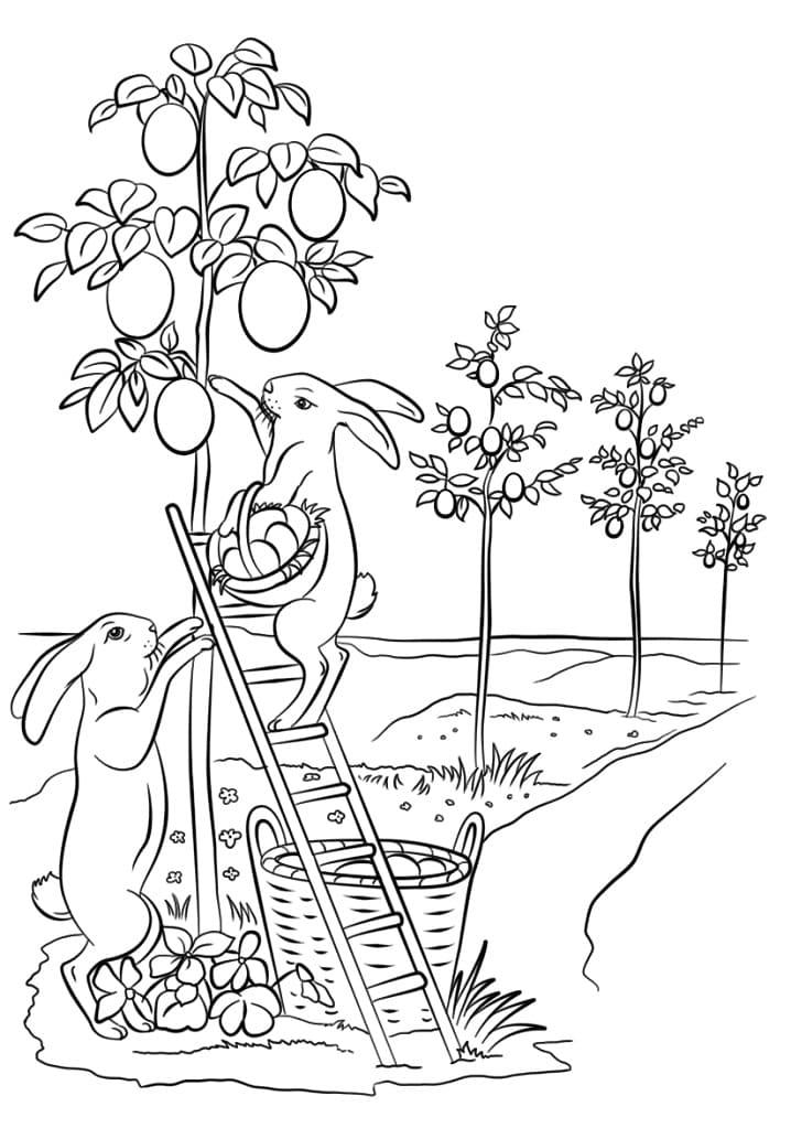 Desenhos de Coelhos da Páscoa 3 para colorir