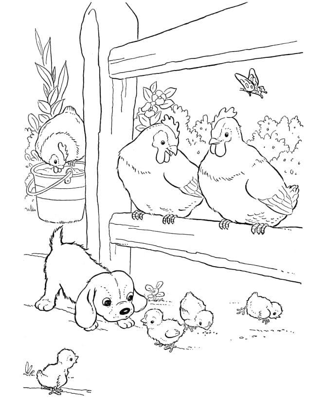 Desenhos de Fazendinha 8 para colorir