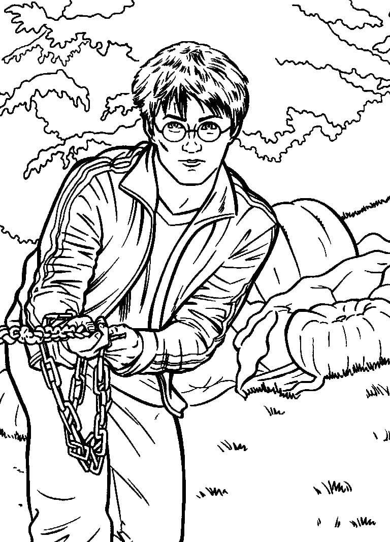 Desenhos de Harry Potter 17 para colorir