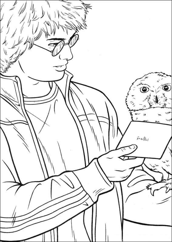 Desenhos de Harry Potter 19 para colorir