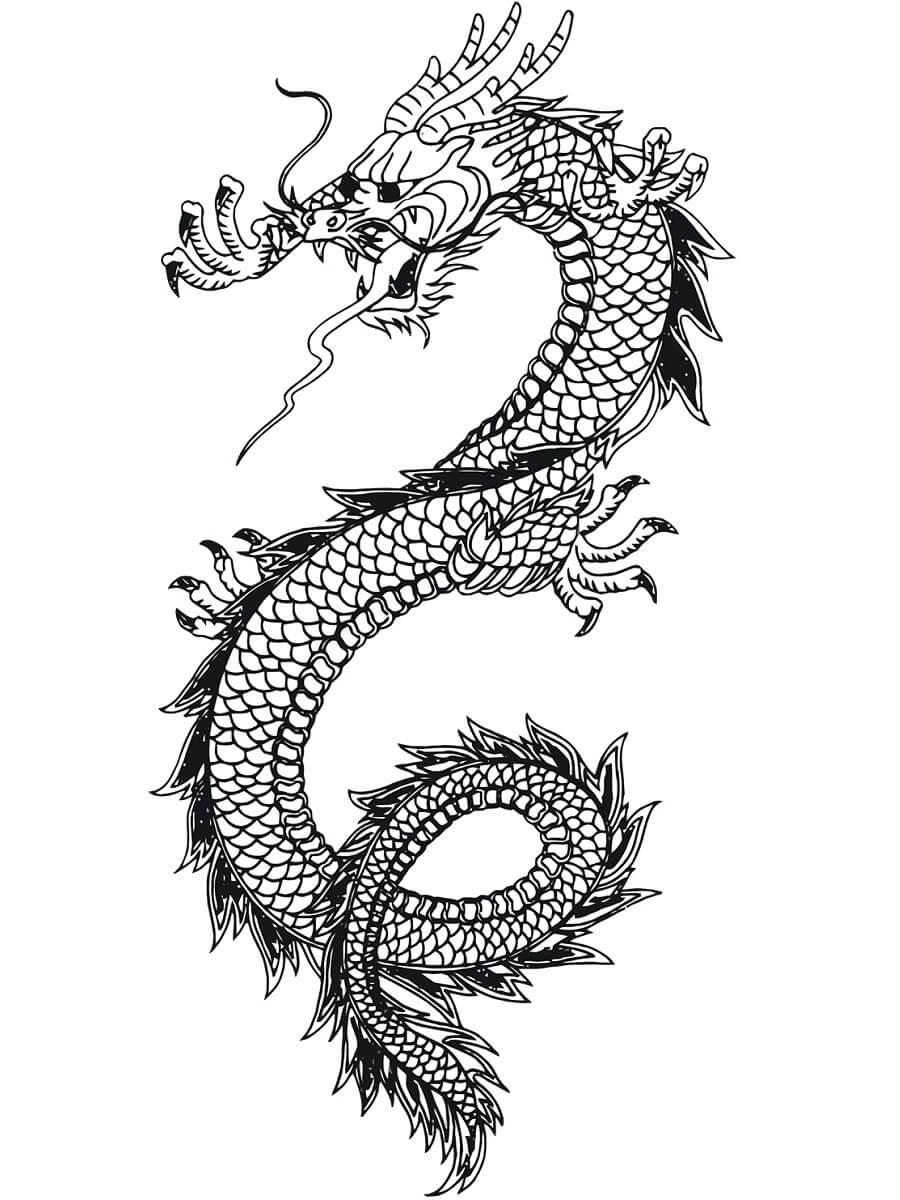 Desenhos de Mosca Dragão Chinês para colorir