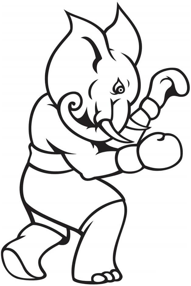 Desenhos de Elefante De Boxe para colorir