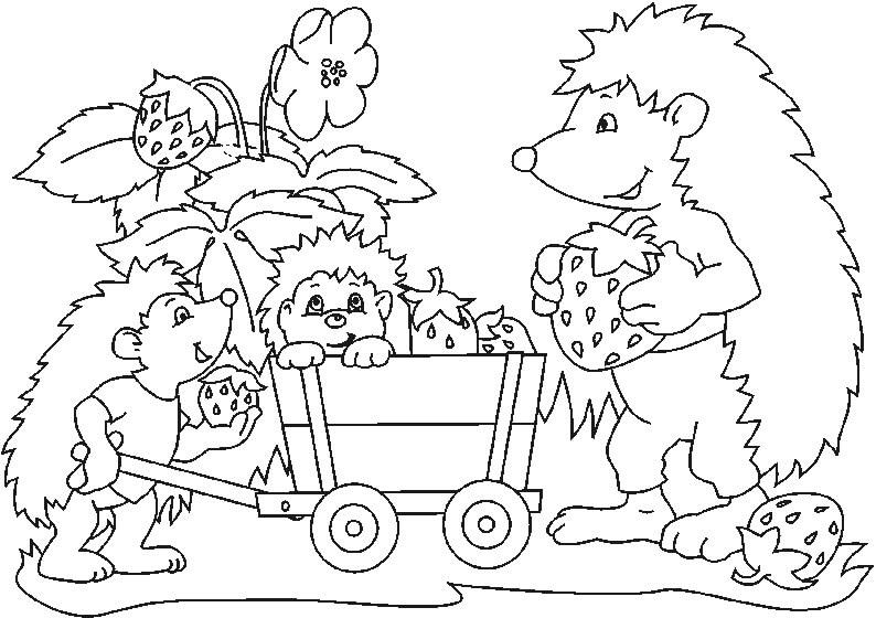 Desenhos de Família Ouriço para colorir
