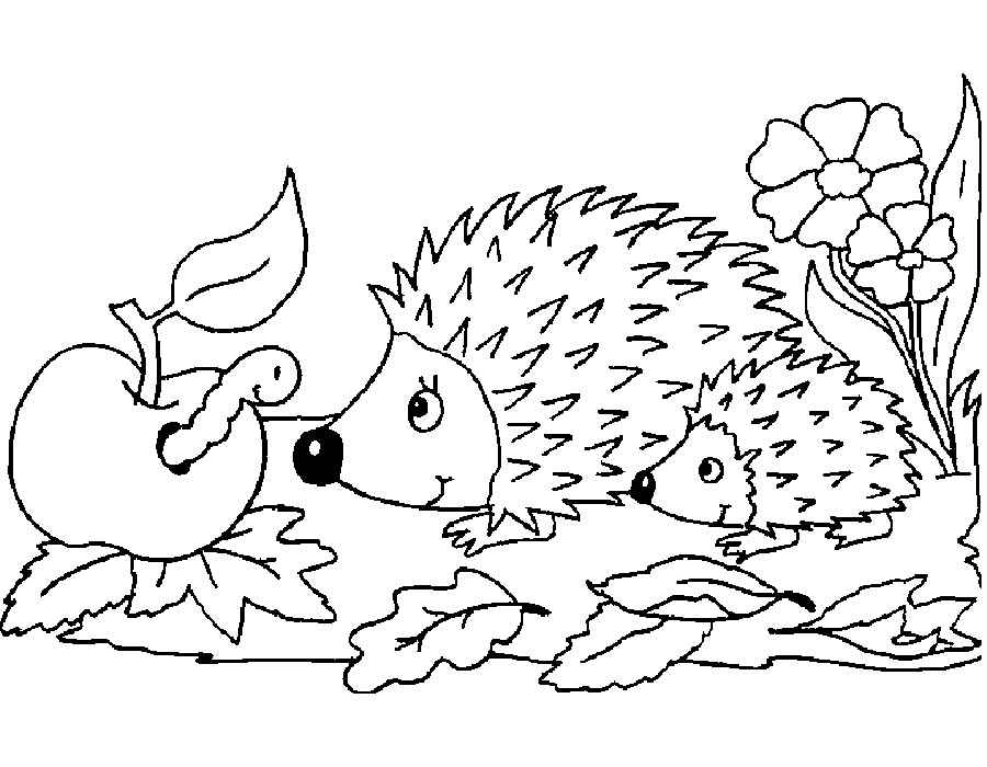 Desenhos de Ouriço Engraçado para colorir