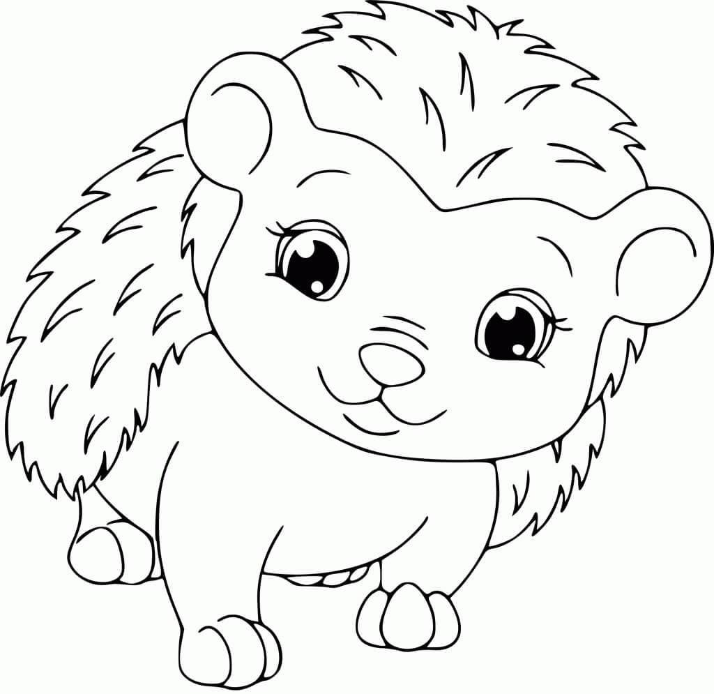 Desenhos de Ouriço Kawaii para colorir