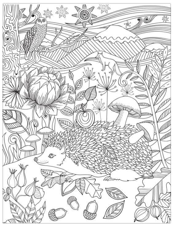 Desenhos de Ouriços E Animais para colorir