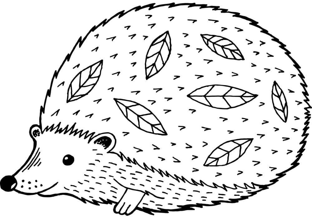Desenhos de Porco-Espinho Gordo para colorir
