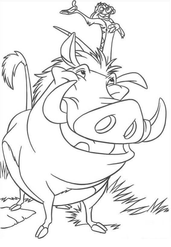 Desenhos de Pumba E Timon para colorir