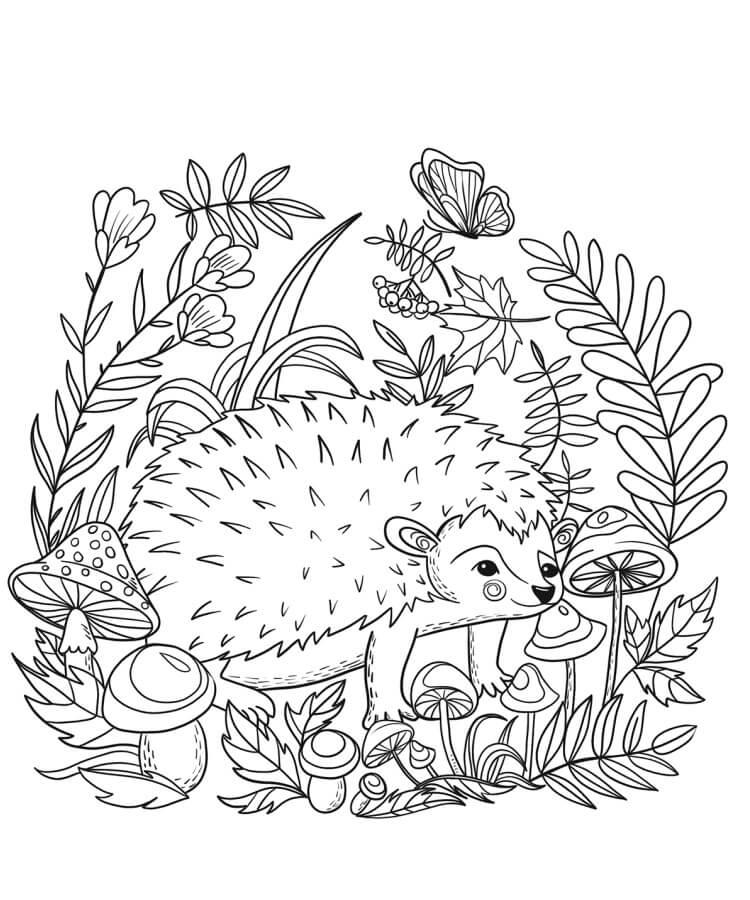 Desenhos de Um Porco-Espinho para colorir