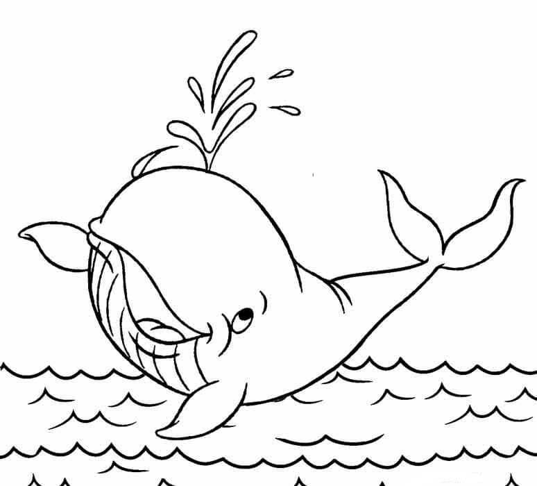 Desenhos de Baleia Engraçada Pulverizando Água para colorir