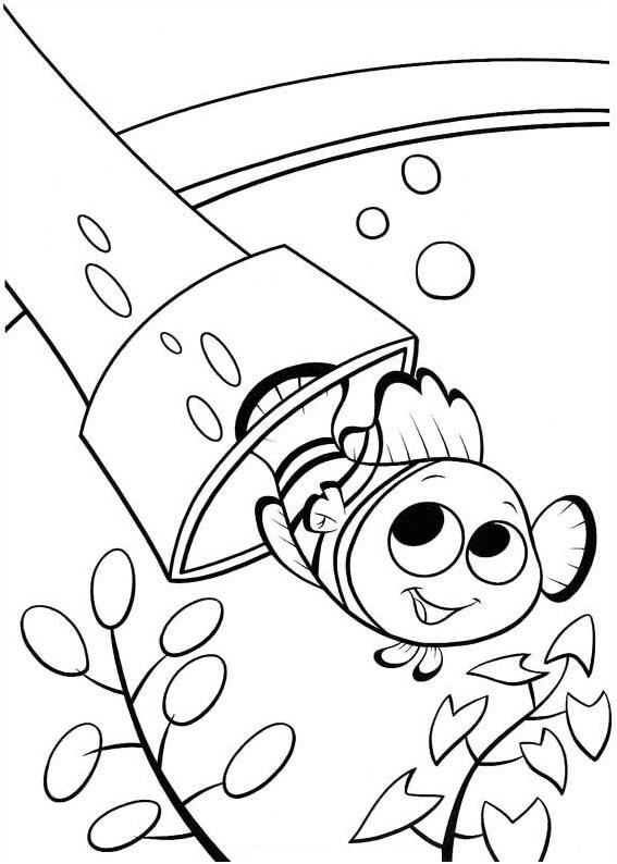 Desenhos de Feliz Nemo para colorir