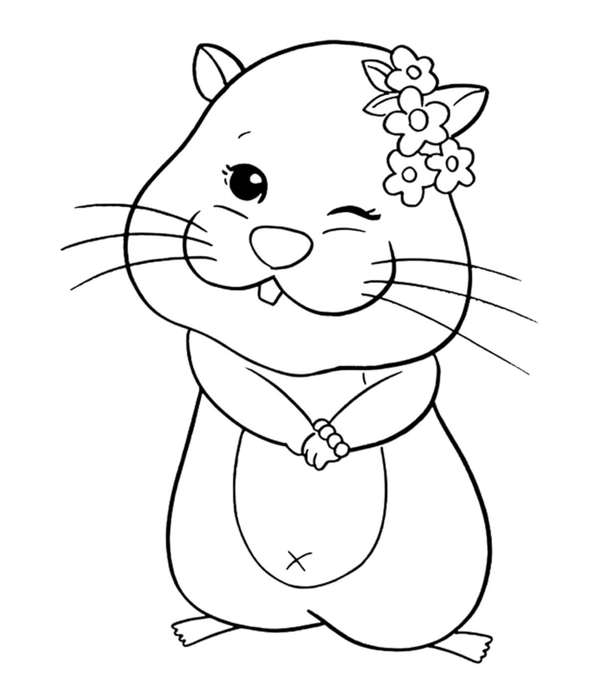 Desenhos de Hamster Engraçado para colorir