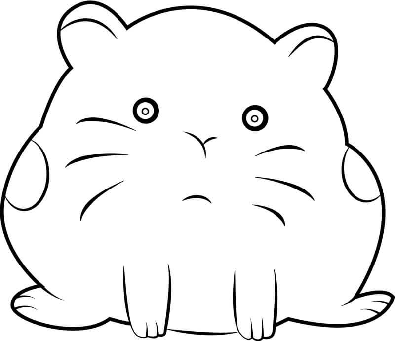 Desenhos de Hamster Fofo para colorir