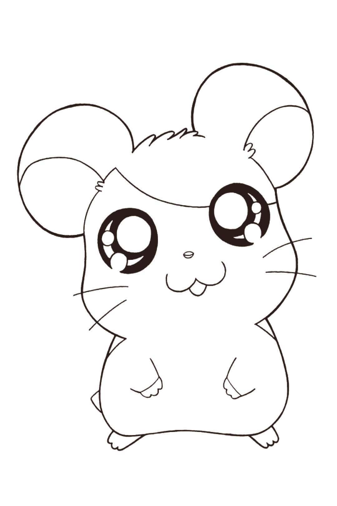 Desenhos de Hamster Kawaii para colorir