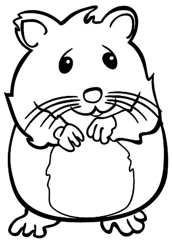 Desenhos de Hamster Sorridente para colorir