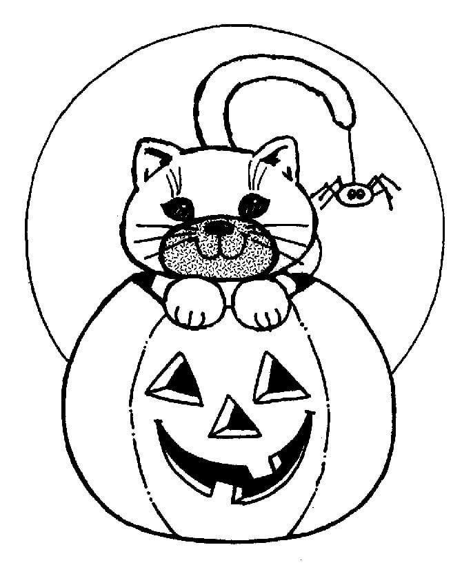 Desenhos de Jack o 'Lantern Com Gato para colorir
